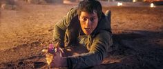 The Scorch Trials Holy Cow