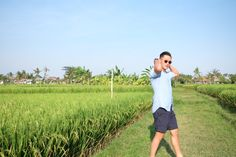 Blue in the padi field
