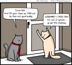 The Bobcats by The Oatmeal - who doesn't love a cat in a screen?