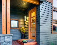 Modern Front Door Design, Pictures, Remodel, Decor and Ideas - page 3