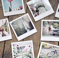 porta-copos de azulejos + fotos