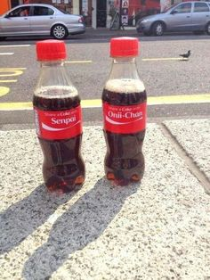 "XD ""HEY BAKA!!!! I FOUND A COCA-COLA! WANNA SHARE IT?"" (Label reads: Share with Senpai)"