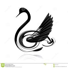 abstract swan | More similar stock images of ` Abstract black swan `