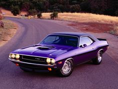 purple and black 67' shelby gt500e for sale | Dodge Challenger 1970 [Un Fierrazo Muscle Car]