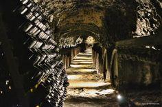 Tokajské víno, Tokaj Macík Winery, Košický región, Slovensko Pictures, Paintings, Clip Art