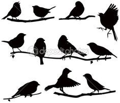 Silhouettes bird on a branch by UrchenkoJulia - Stock Vector