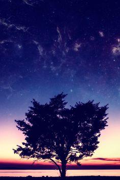 Sunset #iPhone 4s #Wallpaper