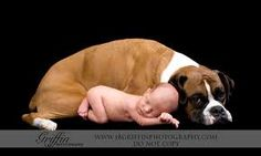 newborn with dog - Google Search Think Dixie will lay for this?