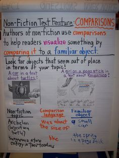non-fiction text features  grade 4 blog with lots of ideas for interactive notebooks that you could use for any grade
