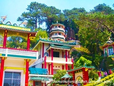 Michelle Toledo uploaded this image to 'Baguio City'. See the album on Photobucket. Baguio Philippines, Philippines Culture, Sense Of Place, The Good Place, Beautiful World, Beautiful Places, Subic Bay, Native Place, Filipino Culture