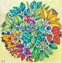 secret garden colouring book completed - Google Search