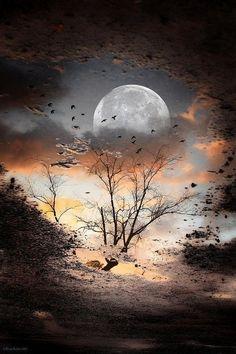 ufukorada: Good night… iyi geceler …