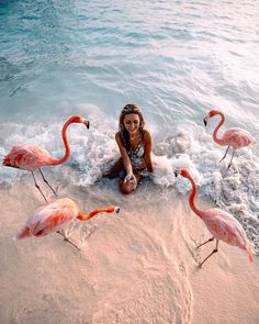 affordable honeymoon packages aruba girl girl feeding pink flamingos at the beach Places To Travel, Travel Destinations, Places To Go, Foto Flamingo, Affordable Honeymoon Packages, Affordable Honeymoon Destinations, Photocollage, Jolie Photo, Parcs