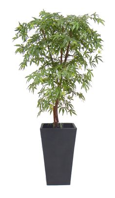 3ft-8ft Handbuilt artificial green maple tree, custom built to your specification