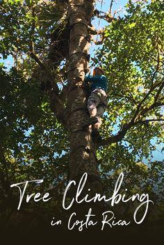 Climbing Trees in Monteverde, Costa Rica via @suitcaseheels
