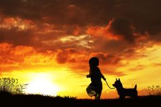 suset with little dogs.... by 3 Joko on 500px