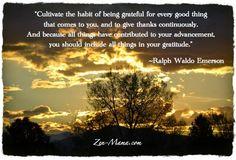 Cartwheeling through Life: Trusting Nature's Course, November 22, 2014