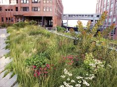 8 Trend-Setting European Urban Garden Designers and Horticulturalists