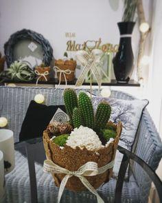 🌵 Cactus 🌵