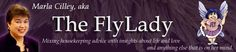 FlyLady | FlyLady.net  Marla Cilley is The FlyLady. Since 1999, she has been a mentor to over half a million women teaching them how to organize their homes and how to love themselves.