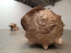 shell sculpture - Google Search