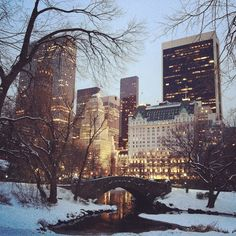 This picture of New York City in the snow at dusk is just so charming!