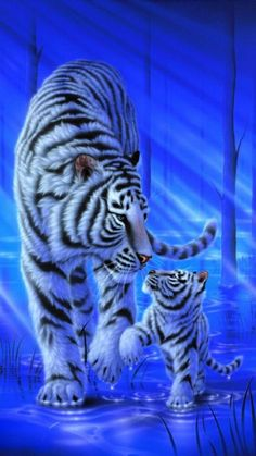 White tiger - Painting Art by Kentaro Nishino - Nature Art & Wildlife Art - Airbrushed Wildlife Art. Tiger Images, Tiger Pictures, Animal Pictures, Beautiful Cats, Animals Beautiful, Beautiful Images, Animals And Pets, Cute Animals, Tiger Wallpaper