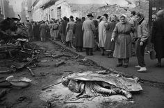Erich Lessing - Budapest. October-November 1956. Insurrection. Citizens queuing for food look at destroyed tanks and dead Soviet soldiers in a Budapest street.