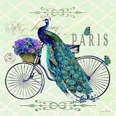 Peacock on Bicyle-JP2559 by Jean Plout