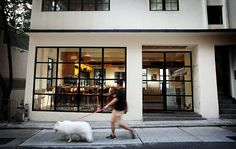 yardbird hong kong (exterior) Cafe Exterior, Hongkong, Luxury Lifestyle, City, Places, Outdoor Decor, Image, Google, Happy