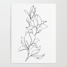 Botanical illustration line drawing - Magnolia Stationery Cards by The Colour Study - Set of 3 Folded Cards x Flower Line Drawings, Botanical Line Drawing, Simple Line Drawings, Art Drawings, Artwork Prints, Canvas Prints, Canvas Art, Magnolia Flower, Color Studies