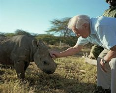 7. Bucket List: See a baby rhino. The reason for this goal: David Attenborough.