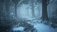 A visual guide to forests for fantasy worldbuilding & storytelling. A simple worldbuilding tool for DMs, GMs, and writers. Winter Forest, Snow Forest, Dark Winter, Fantasy Forest, Fantasy World, Fantasy Art, Flora Und Fauna, Forest Background, Forest Illustration