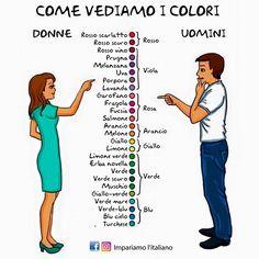I colori  #learnitalian #learningitalian #aprenderitaliano #italienischlernen #italianlanguage #italianlessons #italianteacher #imparareitaliano #impariamoitaliano #practiceitalian