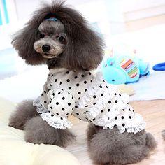 おしゃれな犬服 人気の犬服ブランド