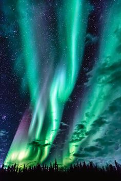 Cheap Family Vacations aurora borealis observatory - visit senja one and only. Beautiful Sky, Beautiful Landscapes, Cheap Family Vacations, Northen Lights, See The Northern Lights, Alaska Northern Lights, Lofoten, Natural Phenomena, Night Skies