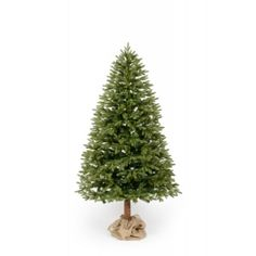 Luxusná jedlička s kmeňom ako vianočný stromček Plants, Garden, Garten, Planters, Gardening, Outdoor, Home Landscaping, Plant, Tuin