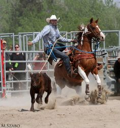 Day 12 - Photo of the Day Rainmaker Rodeo 2011