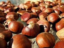 Gaštany Onion, Fruit, Vegetables, Food, Fig Bread, Celebrate Life, Manualidades, Onions, Essen