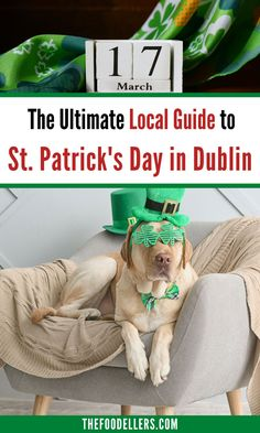 The Ultimate Local Guide to St. Patrick's Day in Dublin: what to do, what's the best place from where to see the parade, where to sleep, where to drink. Discover more about spending St. Patrick's Day in Dublin with our ultimate local guide.  #stpatricksday #paddysday #pattys #pattysday #ireland #dublin #travel Dublin Travel, Ireland Travel Guide, Visit Dublin, Holidays Around The World, All Themes, Worldwide Travel, Travel Guides, Travel Tips, Europe Destinations