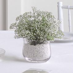 baby's breath wedding centerpiece. cheap, easy. without the filler, just water.
