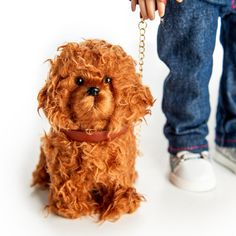 The Queen's Treasures Doll Pet Accessory - Labradoodle Dog With Collar & Leash Leather Collar, Collar And Leash, Doll Shoes, Doll Furniture, 18 Inch Doll, Labradoodle Dog, Doll Accessories, 6 Years, Girl Dolls