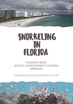 The complete Florida Snorkel Guide with the best FL beaches to snorkel in the Florida Keys, near Miami, Orlando and Southwest Florida! Cheap Florida Vacation, Florida Vacation Packages, Maui Vacation, Florida Travel, Vacation Spots, Vacation Ideas, South Beach Florida, Florida Springs, Miami Florida