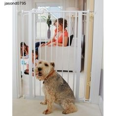 Bettacare Child and Pet Gate Pressure Fix Extra Tall Safety Stair Gate Safety Gates For Stairs, Child Safety Gates, Wooden Dog Gates, Dog Door Flaps, Kids Gate, Dog Barrier, Stair Gate, Door Gate, Indoor Pets