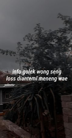 Daily Quotes, Life Quotes, Quotes Galau, Quotes Indonesia, Poetry Quotes, Captions, Instagram Story, Qoutes, Lol