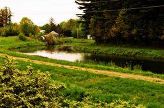 Crane Swamp Trail (Westborough, Massachusetts)