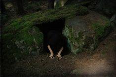 Voice of Nature - hexlibrisofficial:   Hex Libris also on Facebook |...