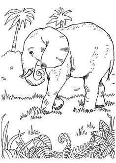 Dessin à colorier d'un éléphant qui se promène dans la forêt