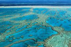 Great Barrier Reef - Australia Uma das setes maravilhas naturais do mundo a grande barreira de corais é uma imensa faixa de corais composta por volta de 2900 recifes e mais de 900 ilhas. É a maior estrutura do mundo feita unicamente por organismos vivos que pode ser vista do espaço. #greatbarrierreef #reef #australia #ozzielife #view  #instatravel #natureza #maravilhasdomundo #ocean #mar #vida #life #travel #trip #descobrindoavida by descobrindoavida http://ift.tt/1UokkV2