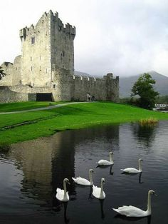 Ross Castle, cerca de Killarney, Irlanda